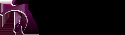 massagekonstanz.de Logo